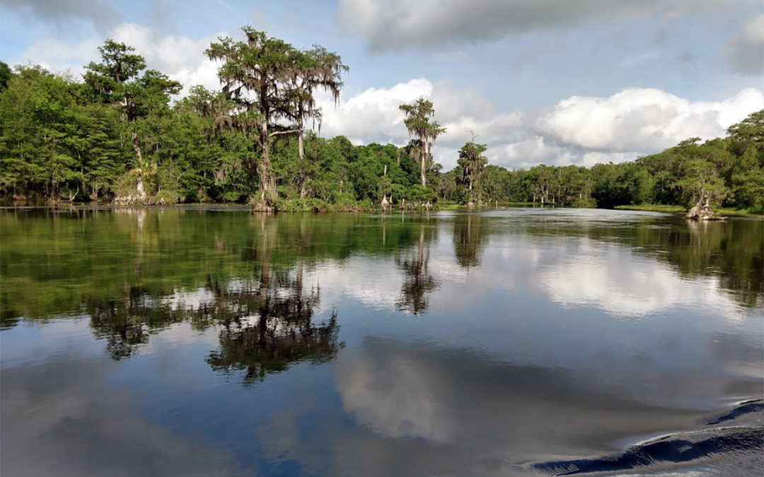 A Quiet Getaway at Wakulla Springs State Park