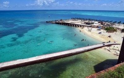 Getting Wet in the Dry Tortugas