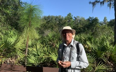 A Guided Tour of Native Florida in SCC